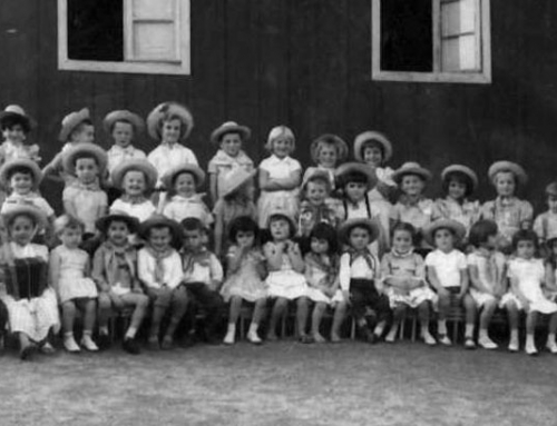 Jardim de Infância Alice Verane